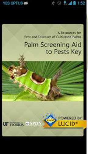 Palm_Screening_Aid_Key
