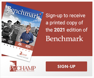 Benchmark Magazine